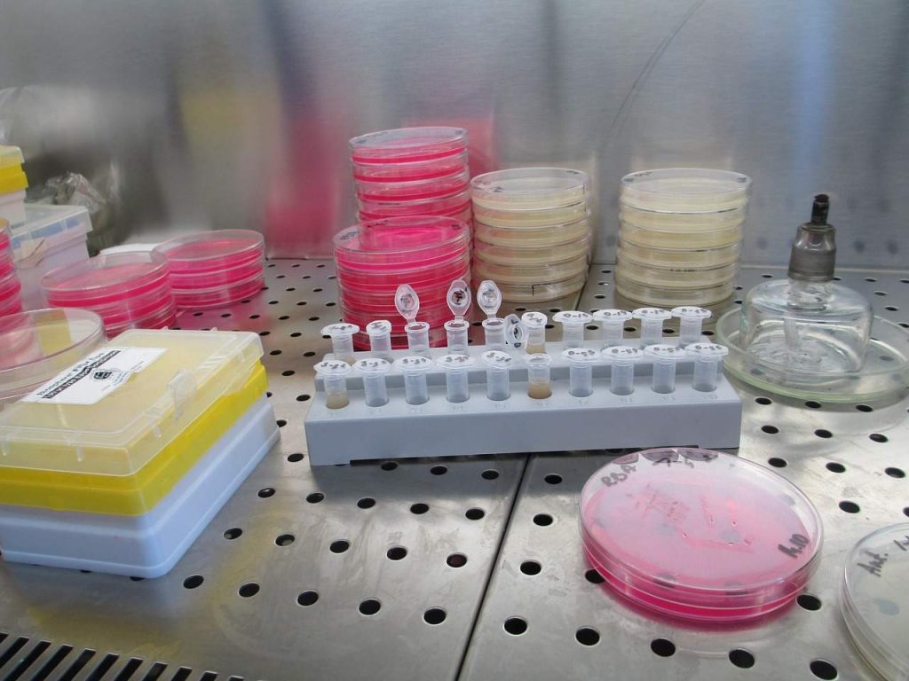 laboratory-aerobia